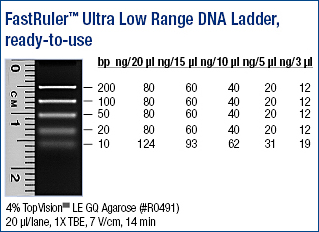 FastRuler™ Ultra Low Range DNA Ladder, ready-to-use